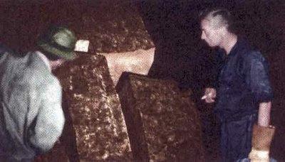 Cueva de los Tajos archeologi