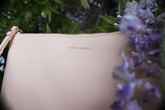 Coccinelle Clutch SS13