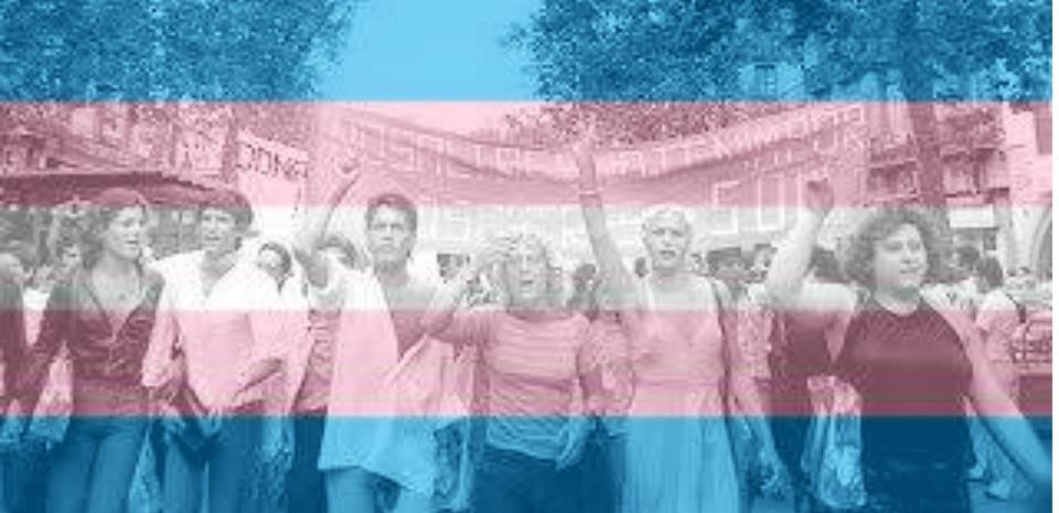 Haz tu imagen con la bandera trans