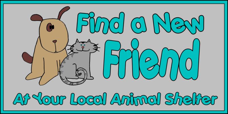 animals for adoption   township of pequannock morris