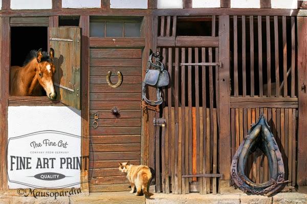 http://www.fineartprint.de/bilder/komm-rein,10171459.html