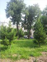 Институт Вишневского Административный корпус Александровская больница