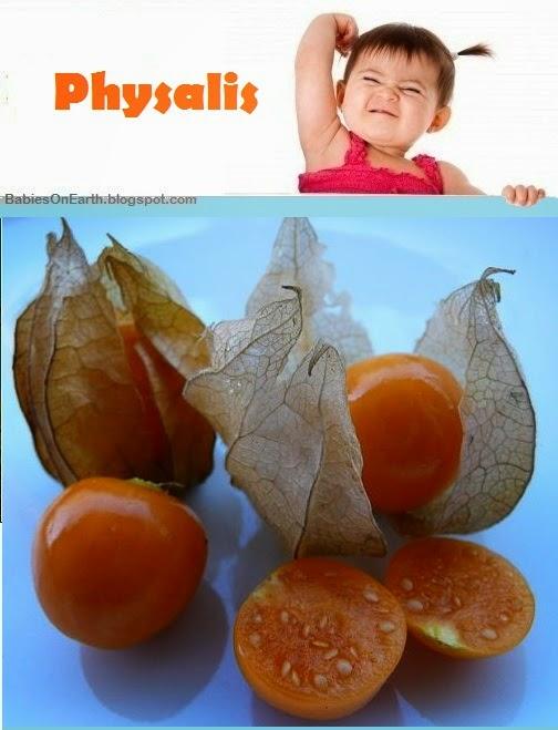 Baby Physalis