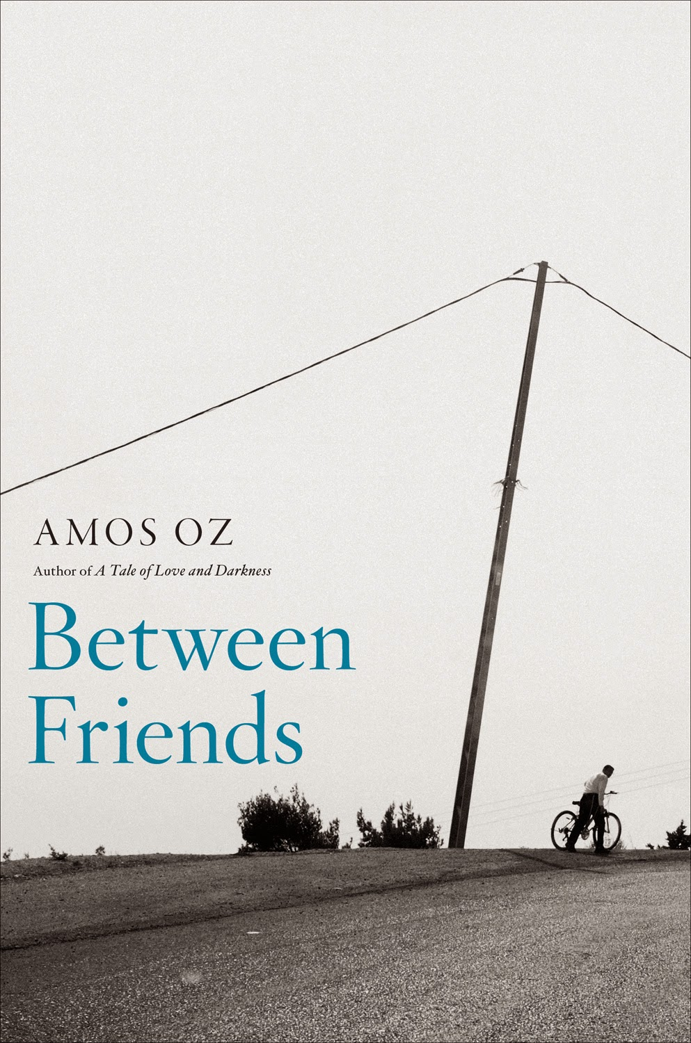 http://discover.halifaxpubliclibraries.ca/?q=title:%22between%20friends%22amos