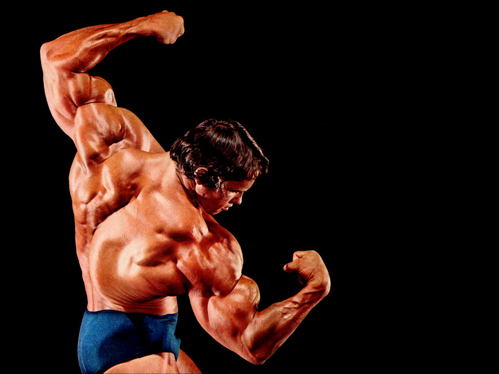 bodybuilding wallpapers arnold schwarzenegger wallpapers