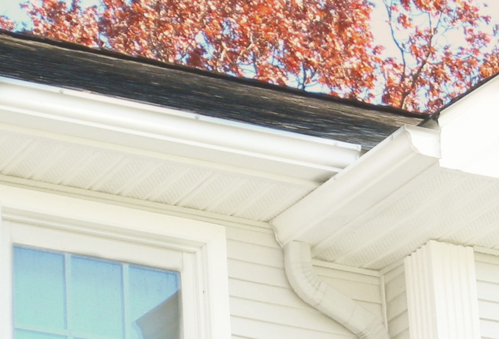 how to professionally clean gutters