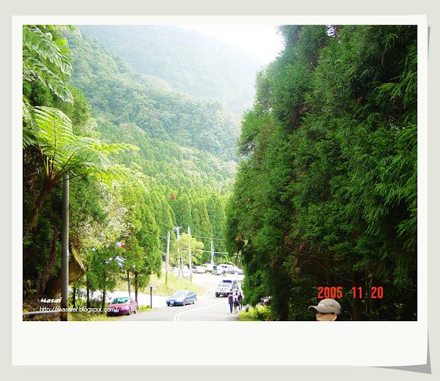 馬武督探索森林4