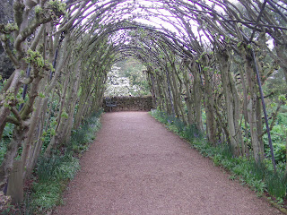 The natural walkway.