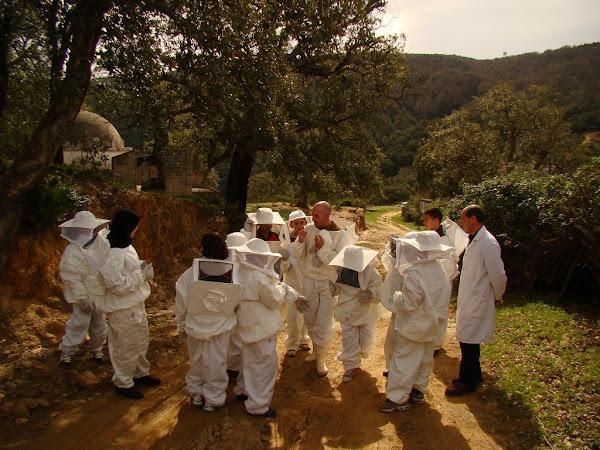 Les élèves de l'école AL AWAEL en visite au rucher