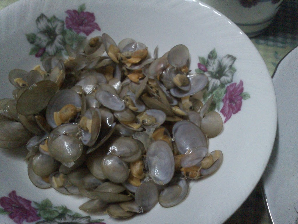 IMG 20120820 192524 Kampungku, Jeram