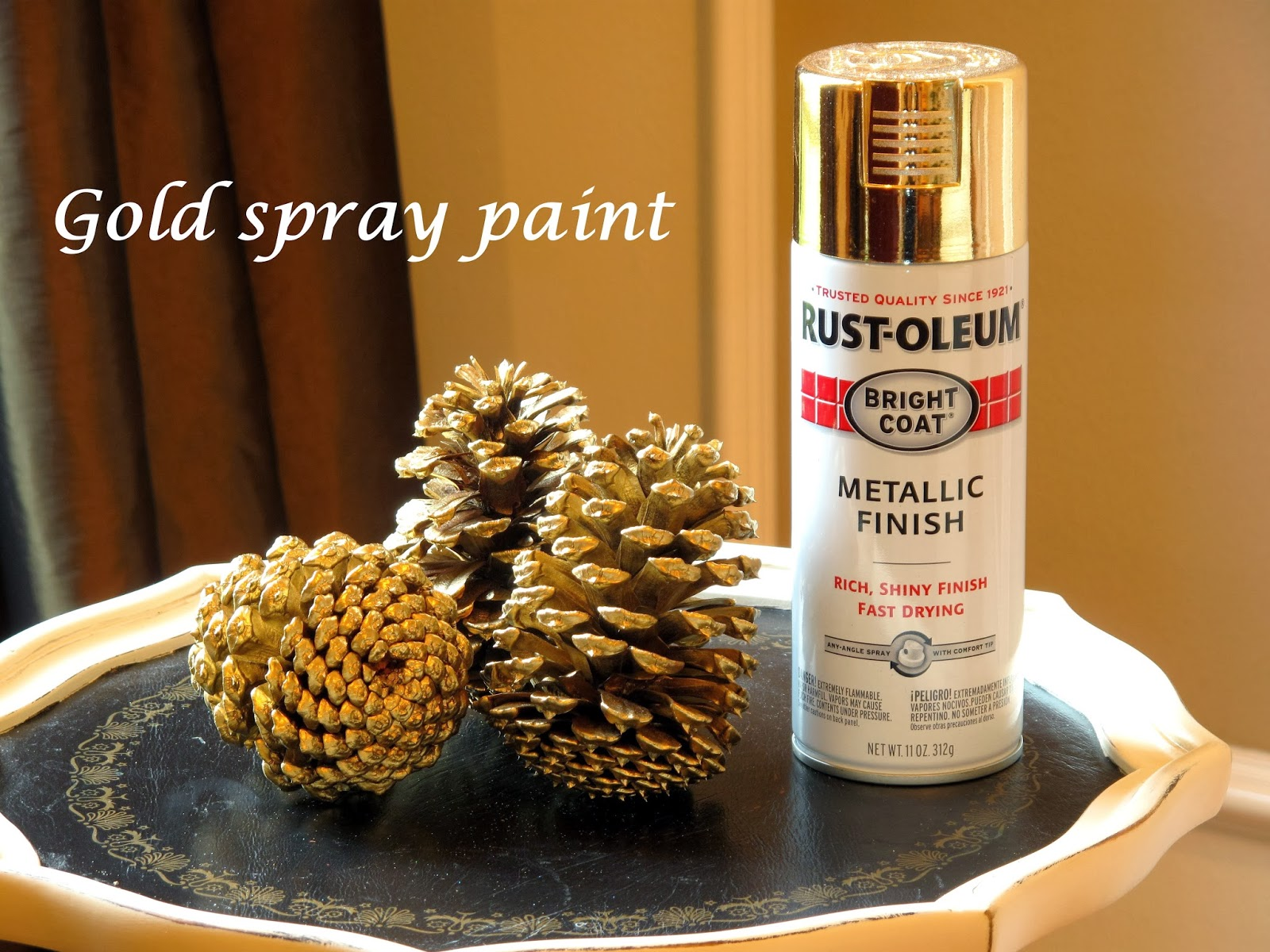Just judy decorating with pine cones for How to paint pine cones for christmas