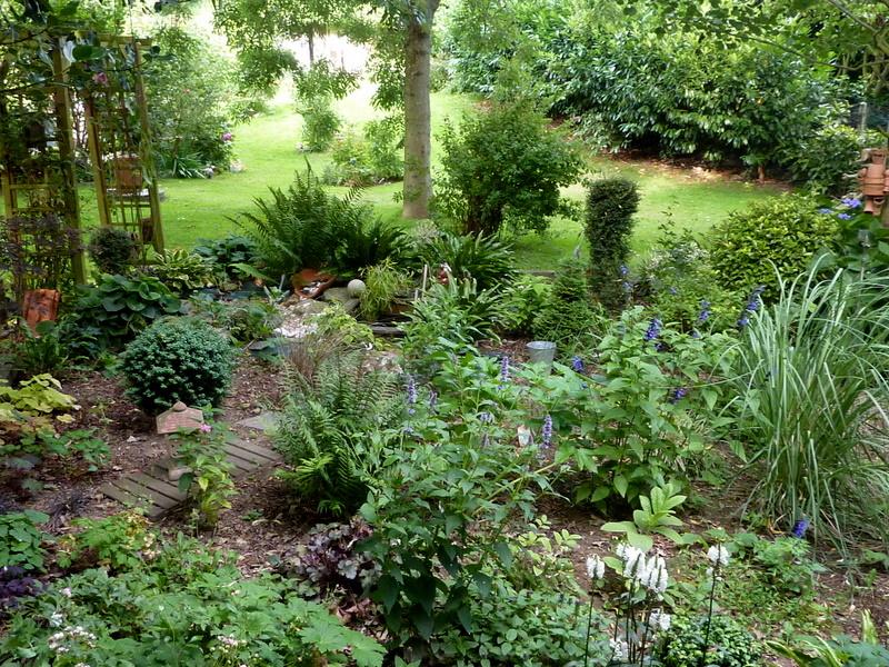 Le jardin d 39 oscar for Agrementer un jardin