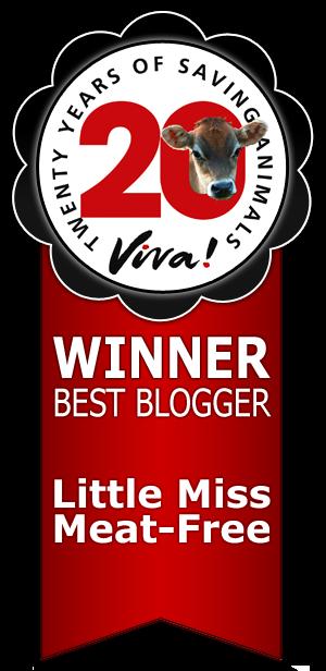 VIVA BEST BLOGGER 2014
