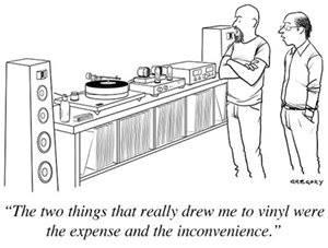 Vinyl Practicality