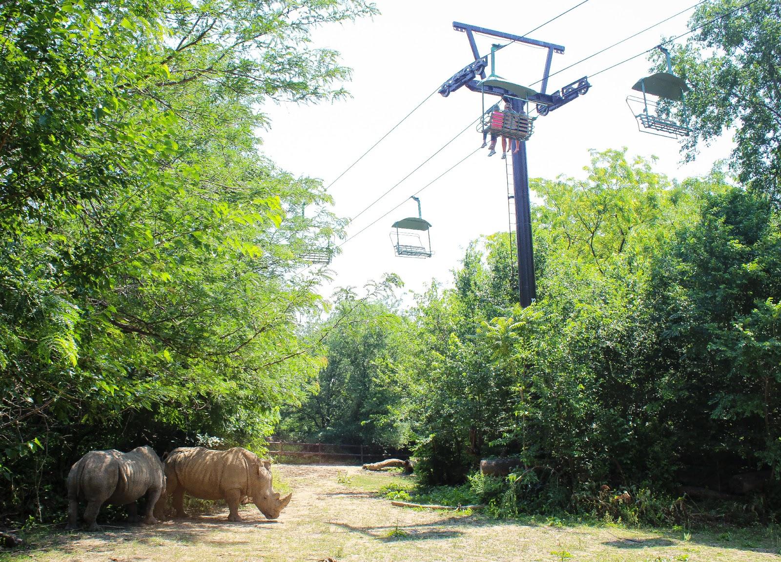 Omaha Nebraska Zoo Bing Images