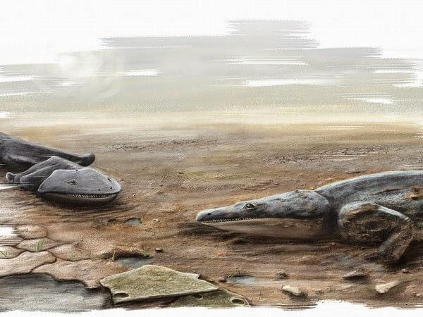 Salamandra gigante era um dos maiores predadores da Terra