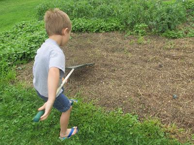 Garden Update July 2