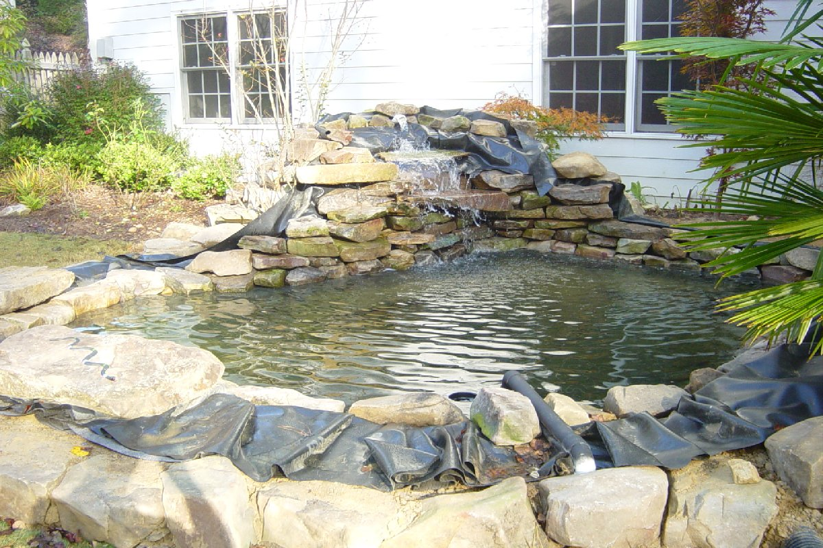 Pond liners for koi pond koi fish care info for Koi pool construction