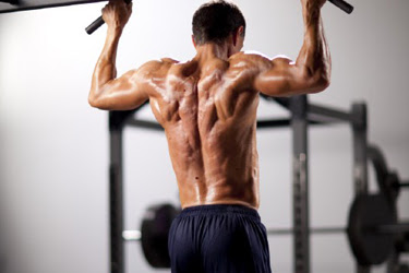 Back Training Tips