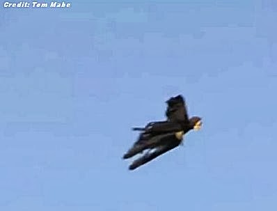 UFO is Really Flying Grim Reaper? | VIDEO