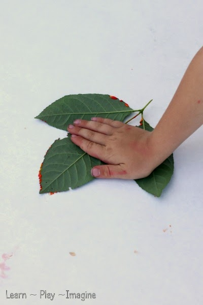 Making leaf prints - a nature based art activity for kids