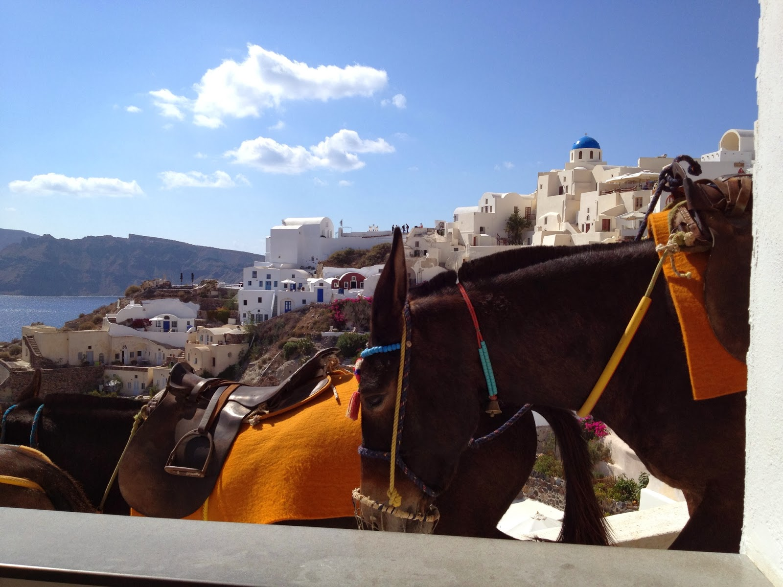 Santorini - Donkeys heading to work