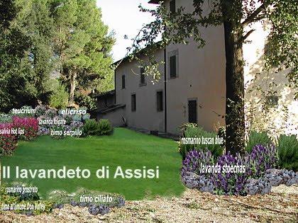 Progetti giardini privati gratis on line con piante - Giardino di campagna ...