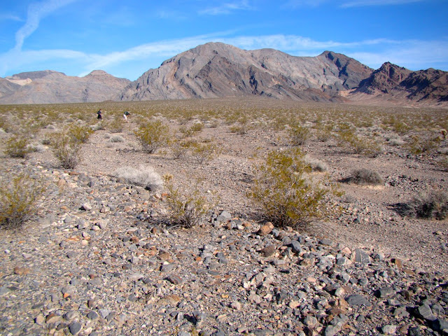 From Little Treasures Come Big Stories: Travels Through Death Valley National Park