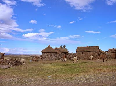 Cabañas de ganado, camélidos, Puno, Perú, La vuelta al mundo de Asun y Ricardo, round the world, mundoporlibre.com