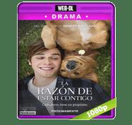 La Razon de Estar Contigo (2017) Web-DL 1080p Audio Dual Latino/Ingles 5.1