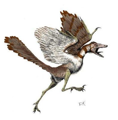 aves de hace 150 millones de años Archaeopteryx