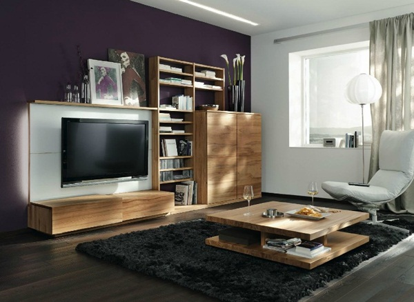 Modern Furniture with Natural Wood Pieces in Austria