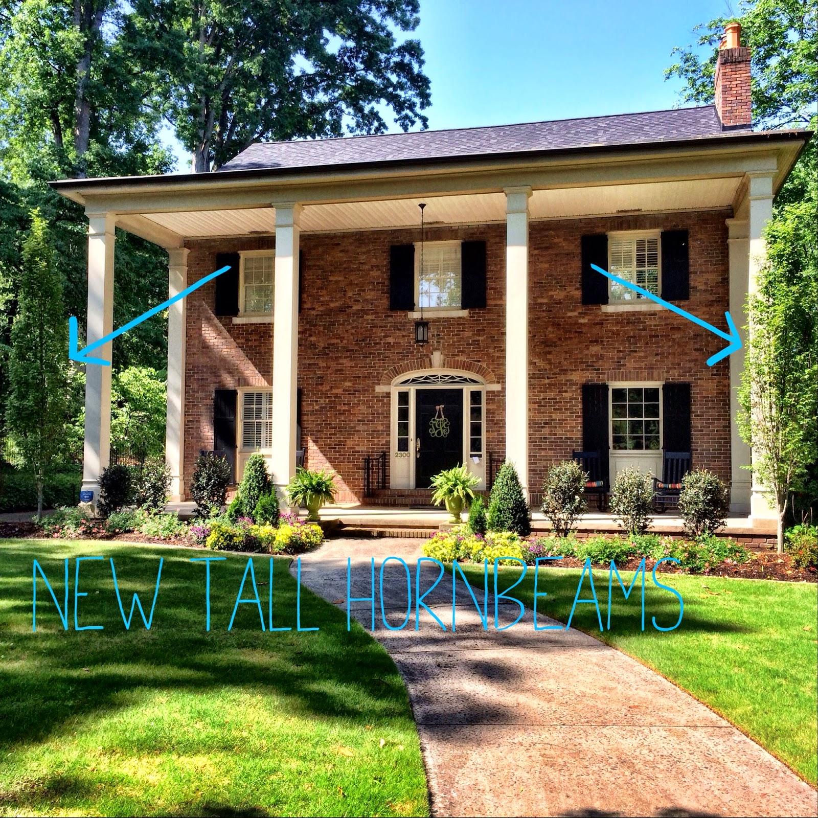 home transformation front yard landscaping sourjones