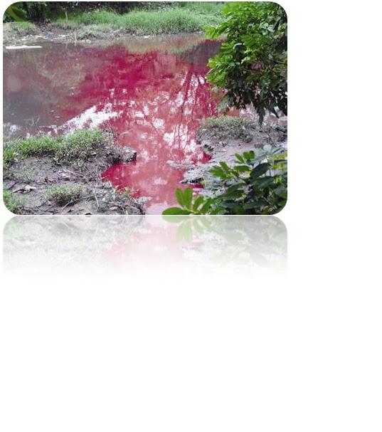 hình ảnh ô nhiễm nguồn nước do nước thải dệt nhuộm
