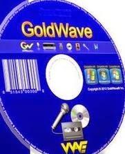goldwave license number