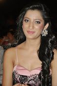 Richa panai latest glam pics-thumbnail-19