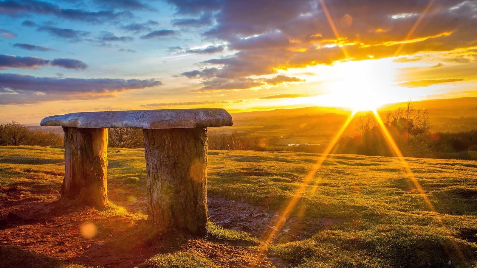 Reino Unido Safari - Un sitio para cualquier persona interesada en la vida salvaje de Gran Bretaña e Irlanda del Norte