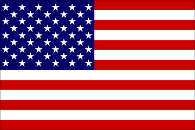 Influential image within printable usa flag