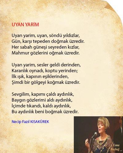 Uyan Yarim