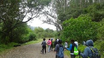Mahogany Closet, Hiking Tilden Nature Area,Hiking, Hiking Group, Peak Trail