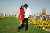 Park Telugu movie Photos Gallery-thumbnail-5