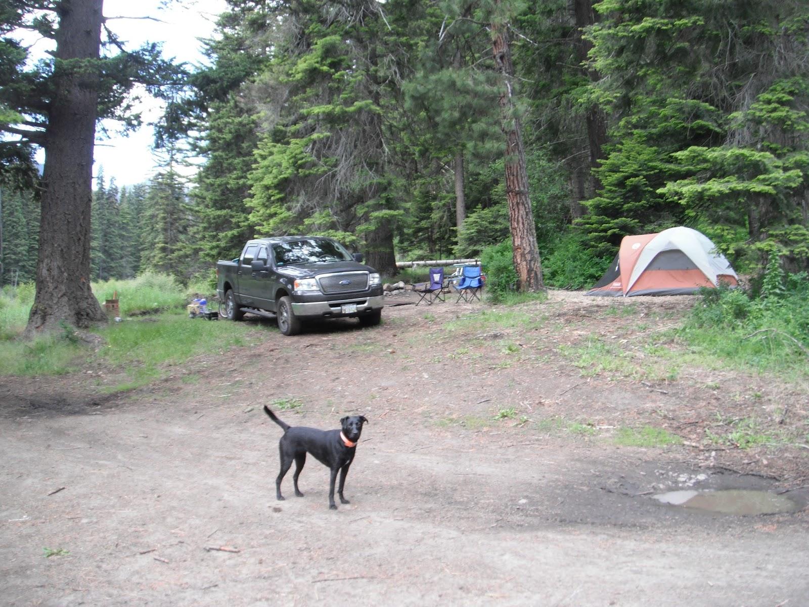Where I have Fished: Taneum Creek/Yakima River, WA