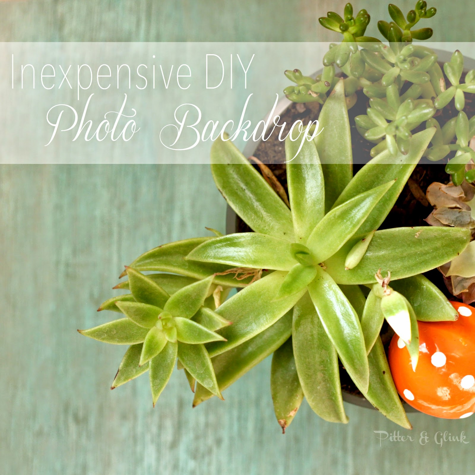 Inexpensive DIY Reversible Photo Backdrop #photography #photobackdrop www.pitterandglink.com