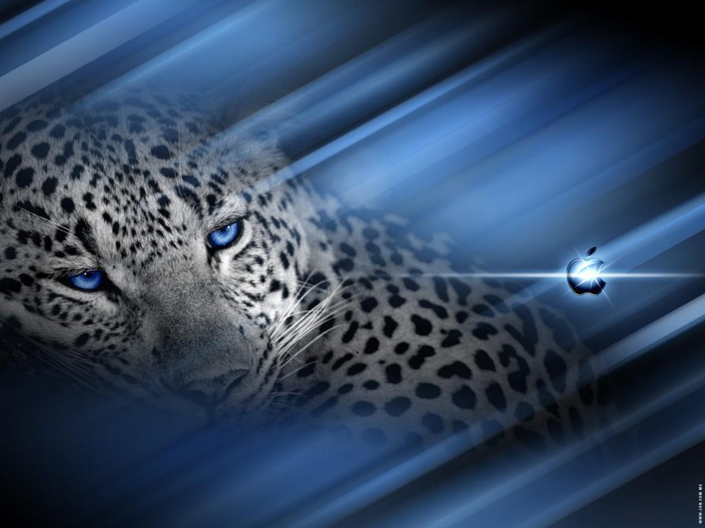 http://4.bp.blogspot.com/-l4D0S9Uq8Nw/TVO2WuP65KI/AAAAAAAAAFI/Yc0kd2HHjK4/s1600/Mac-y-Leopard.jpg