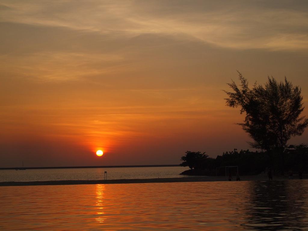 Infinity Pool Sunset