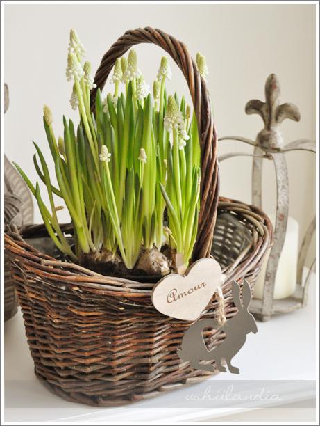 dekoracja wiosna wielkanoc / easter spring deco