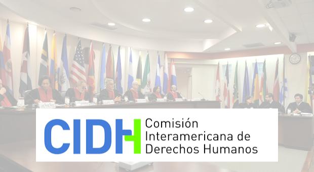 Conozca informe completo presentado ante la CIDH