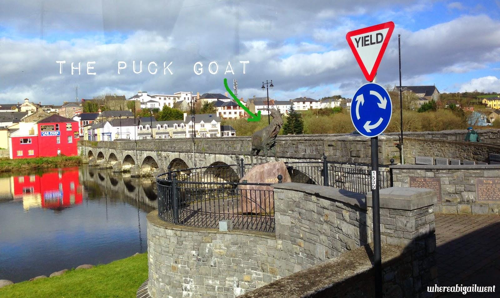 Killorglin Puck Goat