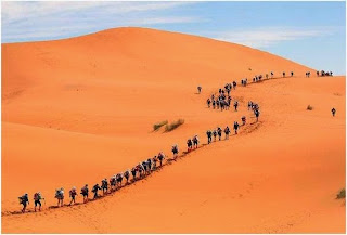 Moisés caminha no deserto