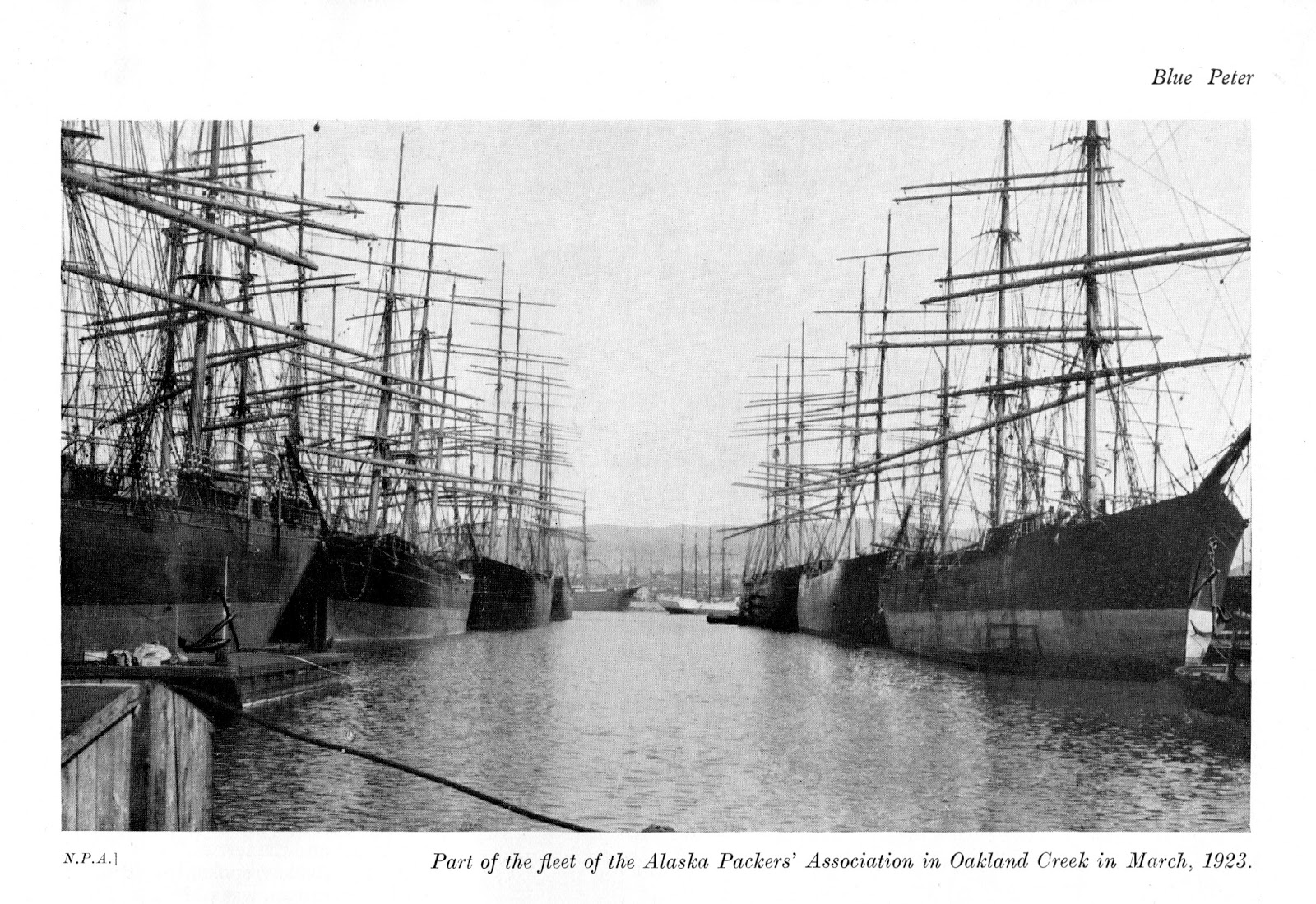 Part of the fleet of the Alaska Packers' Association in Oakland Creed in March, 1923